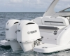 Regal Outboard 33 OBX Bild 3