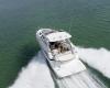 Regal Sport Yacht 35 Sport Coupe Bild 3