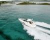 Regal Sport Yacht 42 Sport Coupe Bild 3