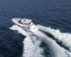 Regal Sport Yacht 53 Sport Coupe Bild 3