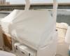 Regal 33 SAV Boot kaufen (53)