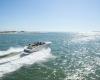 Regal Boote Sportboote LS4C (12)