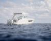 Regal Outboard 33 OBX Bild 2