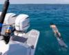 38sav_lifestyle_fishing_diving309