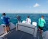38sav_lifestyle_fishing_diving545